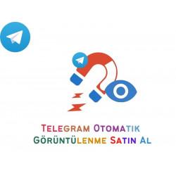 Telegram Kanal Üyesi Satın Al